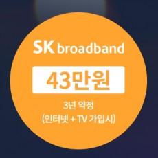 SK 브로드밴드 인터넷